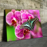 flower and butterfly wall art