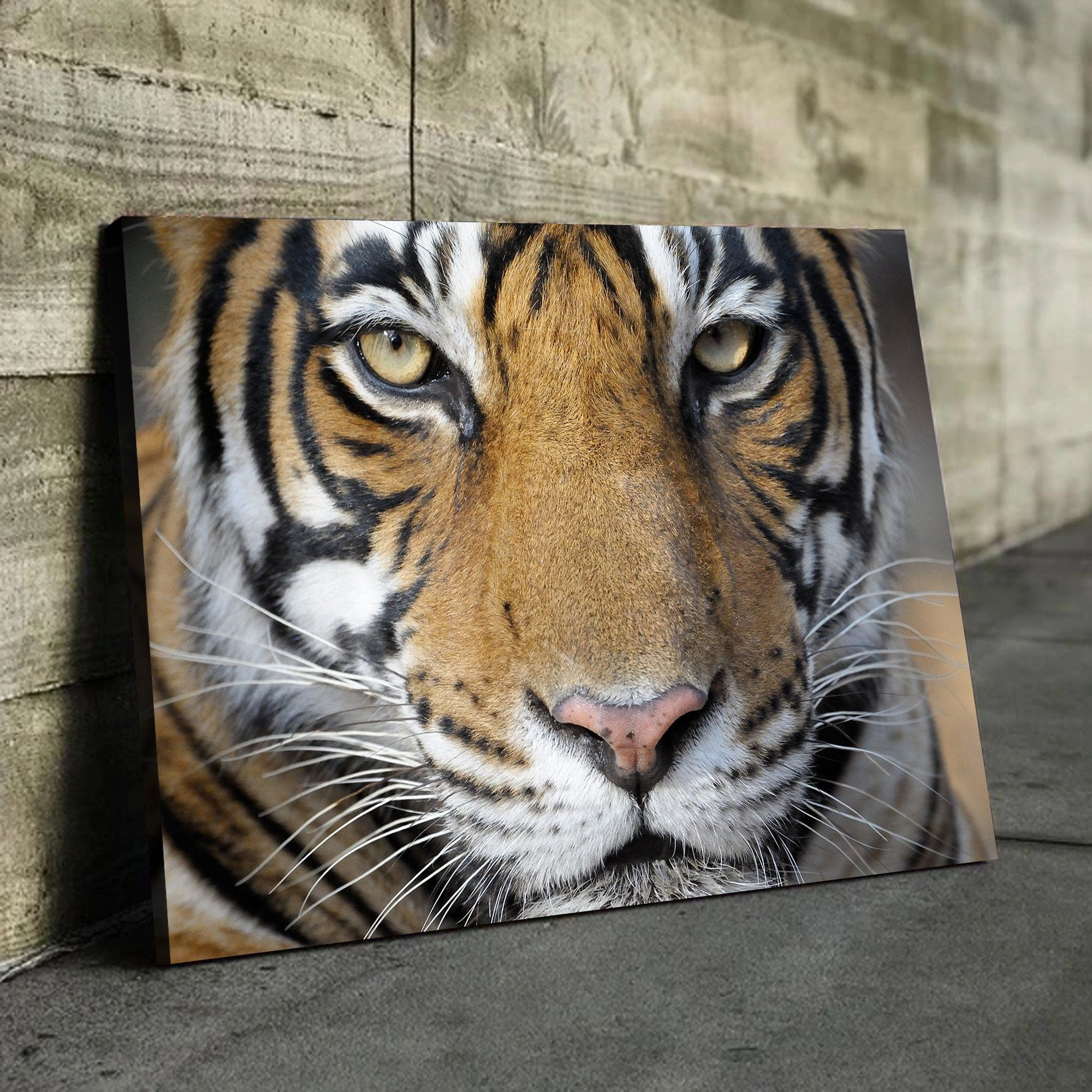 Bengal Tiger lover wall art