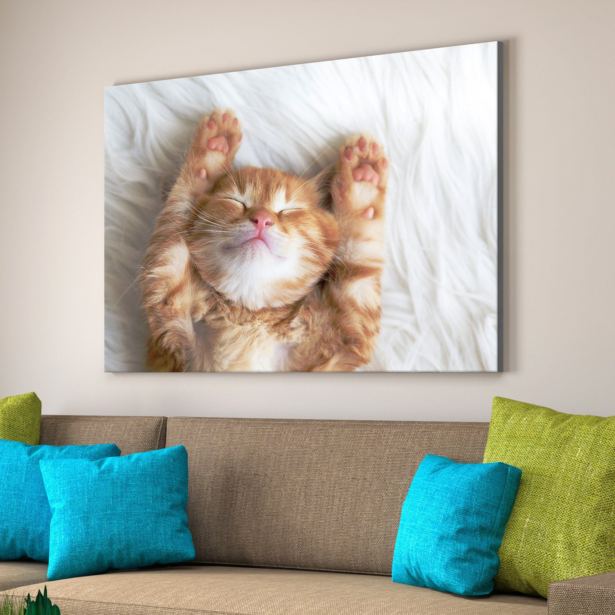Sleeping Kitten bedroom art