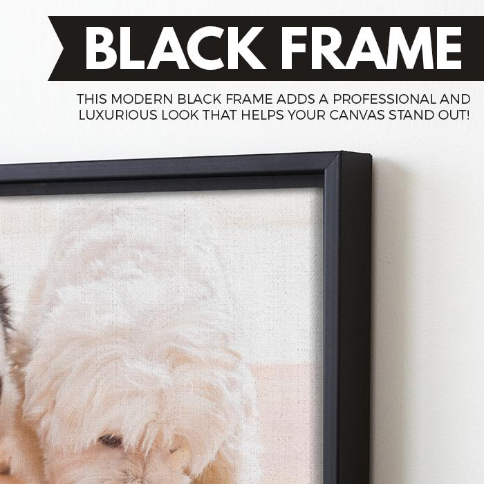 dog and cat wall art black floating frame