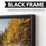 Rocky Mountain wall art floating frame