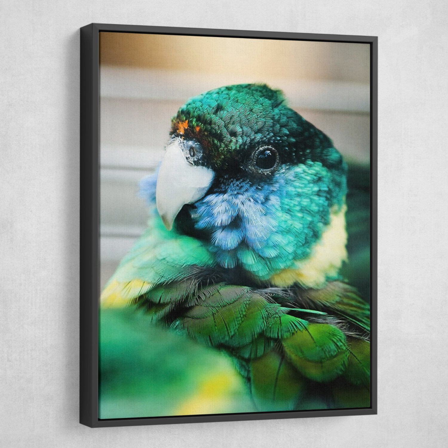 Aviary wall art black frame