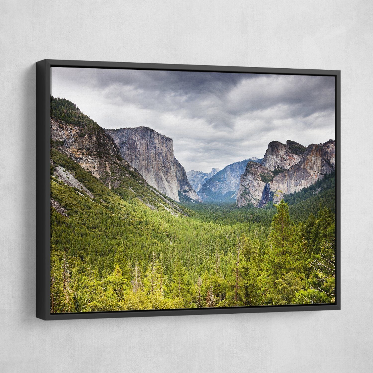 Yosemite National park  wall art black floating frame
