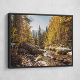 Rocky Mountain wall art black frame
