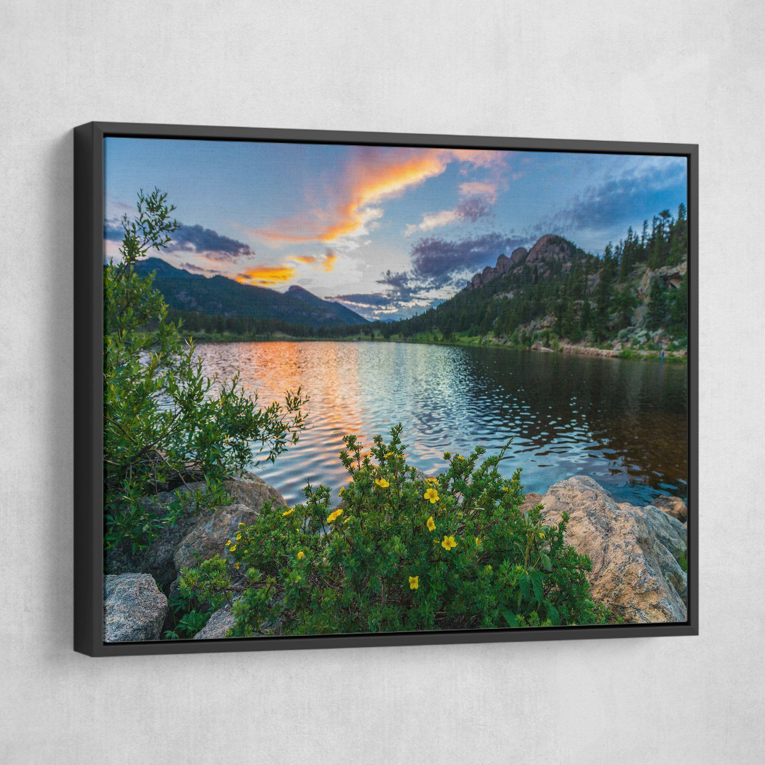 Rocky Mountain National Park Lily Lake wall art
