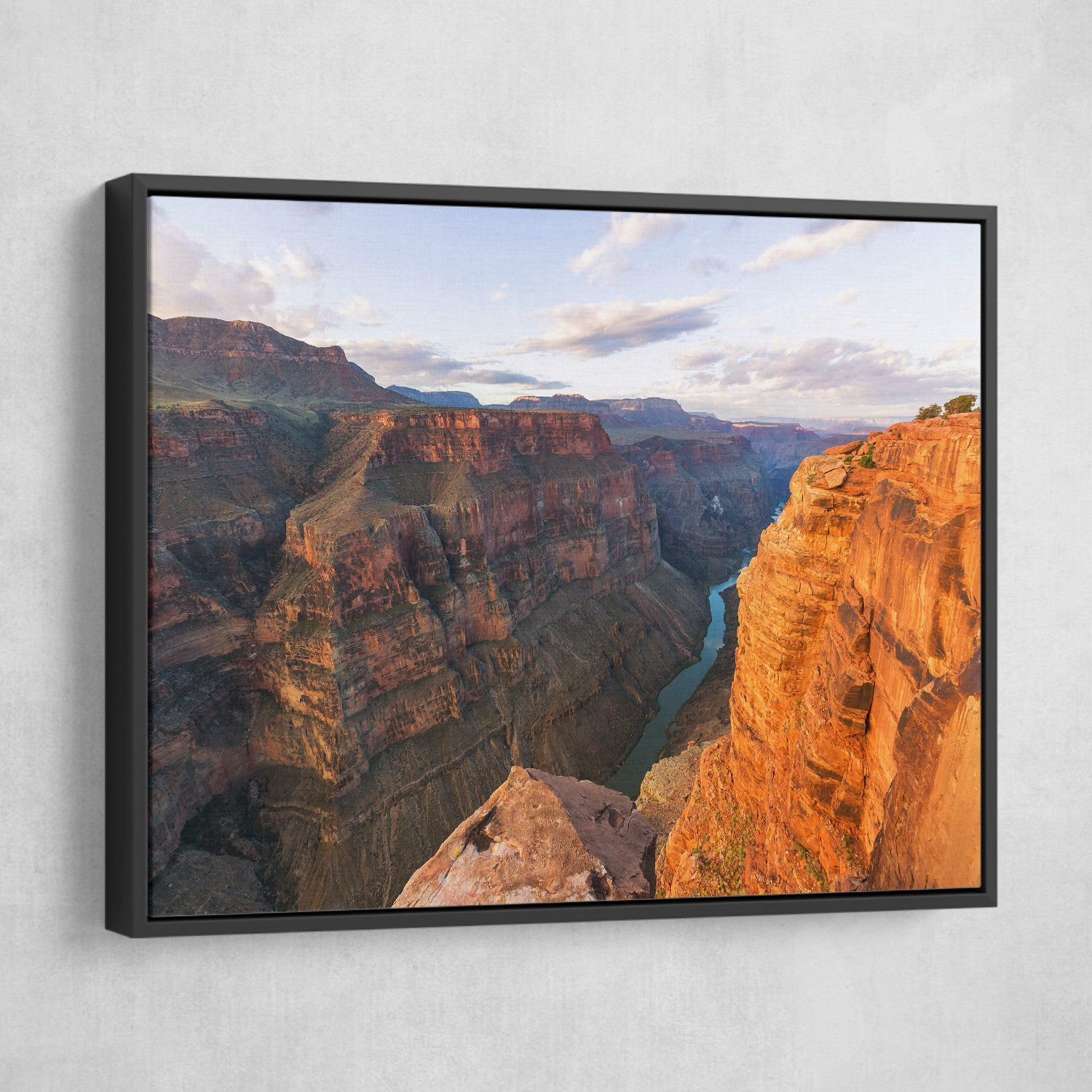 Grand Canyon National Park wall art black floating frame