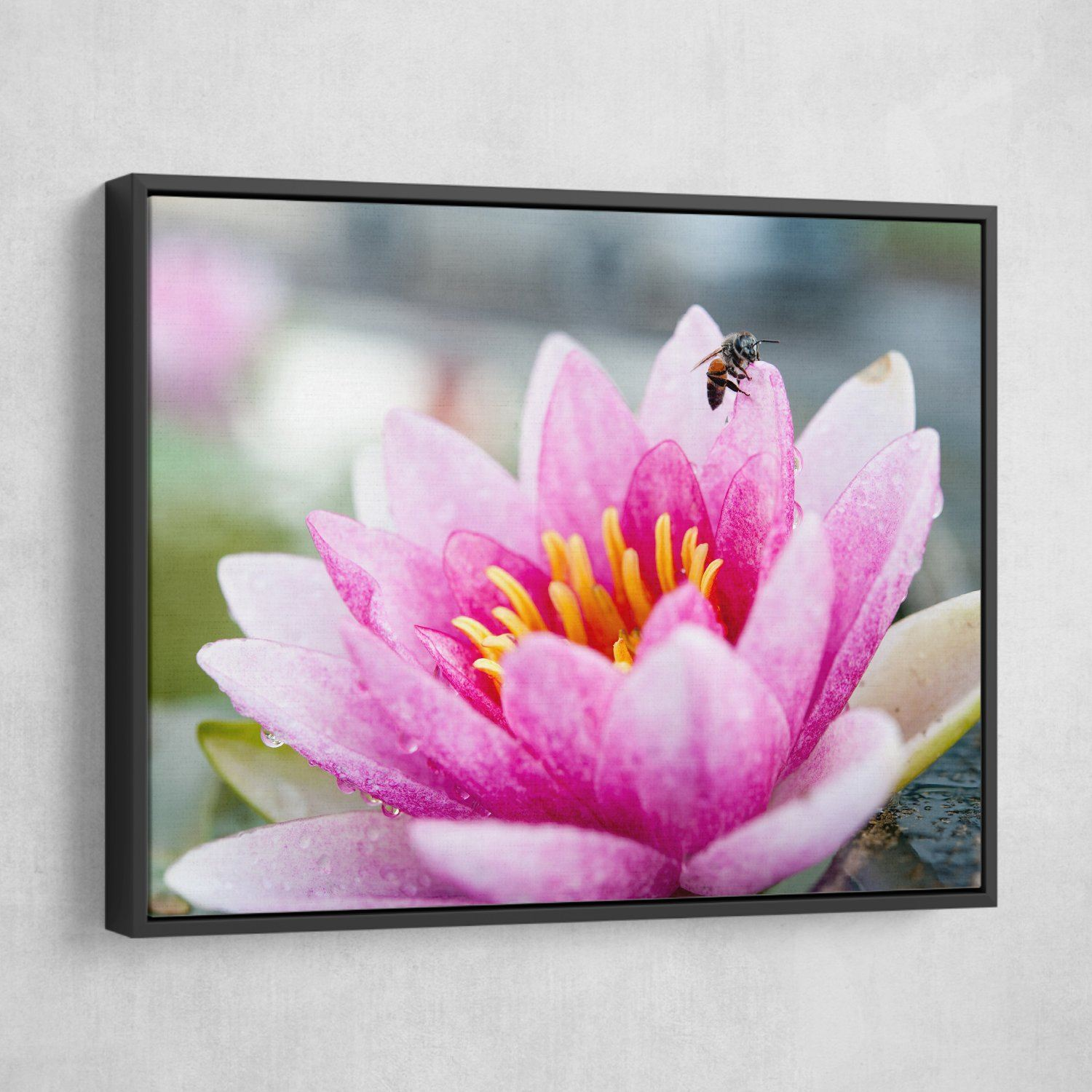 Lotus And A Bee wall art black frame
