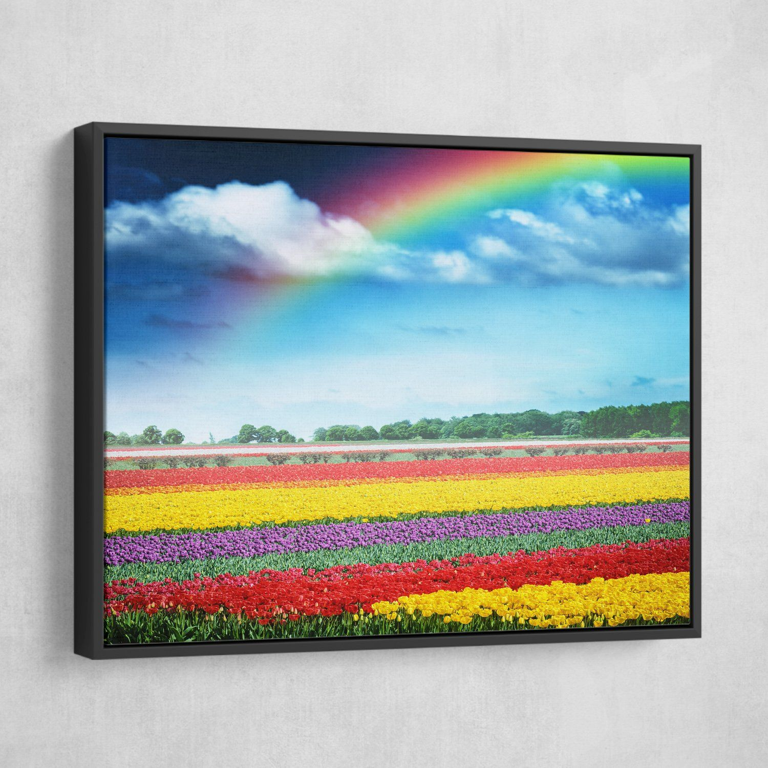 Rainbow Over Tulips wall art black frame