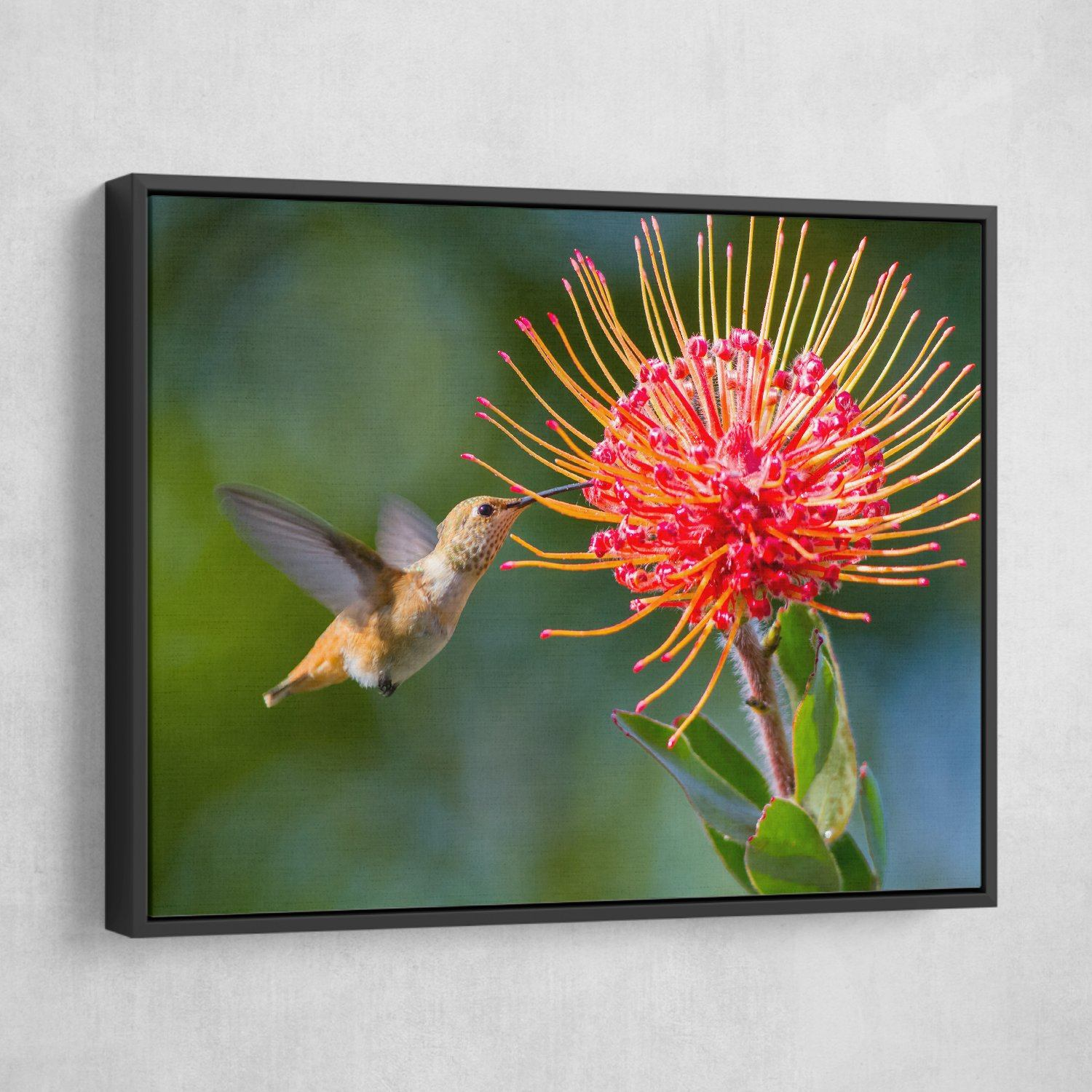Working Hummingbird wall art floating frame