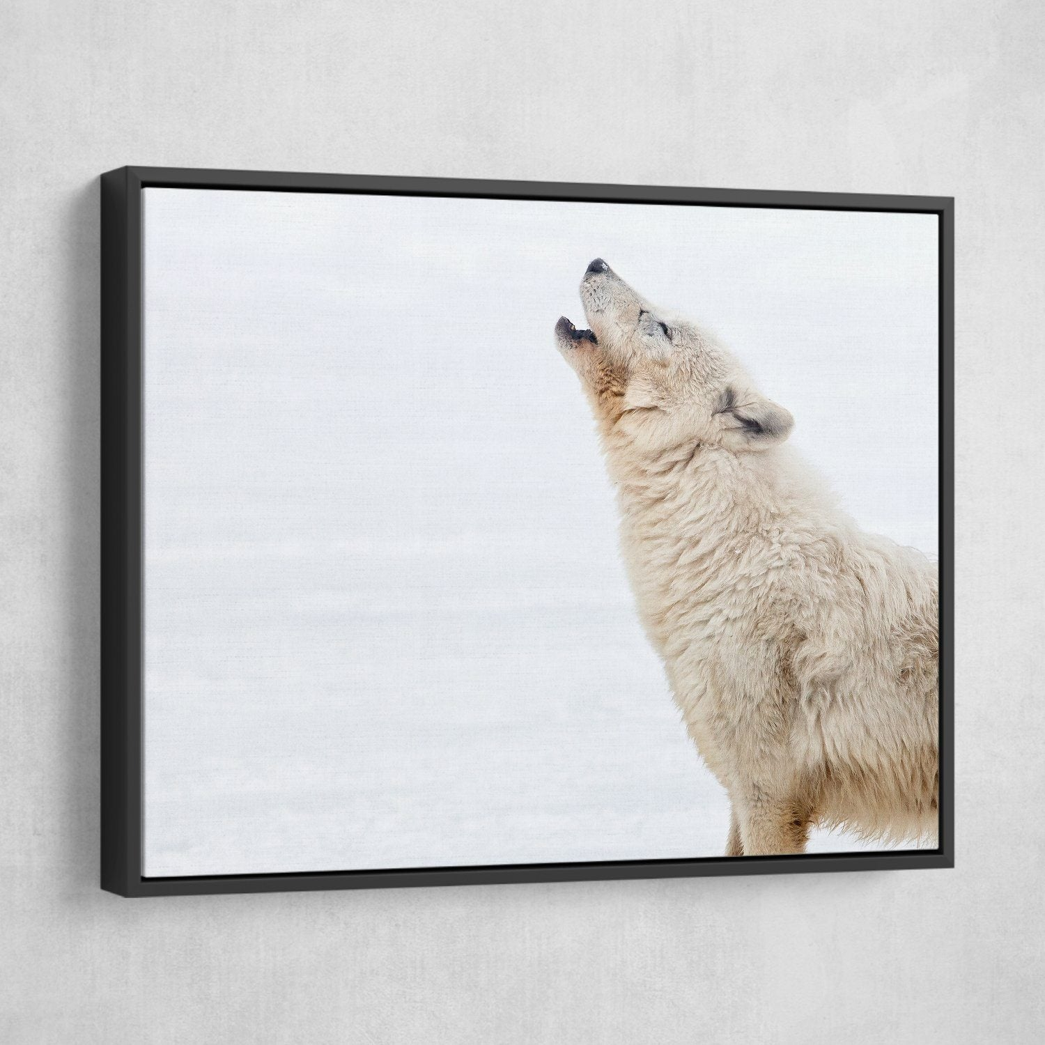 Arctic Wolf Howling wall art floating frame