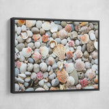 black framed Seashells by the Seashore wall art