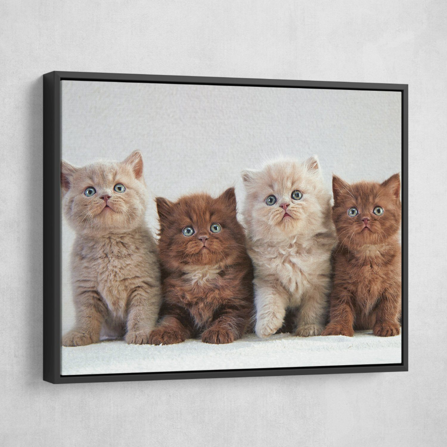 cats wall art