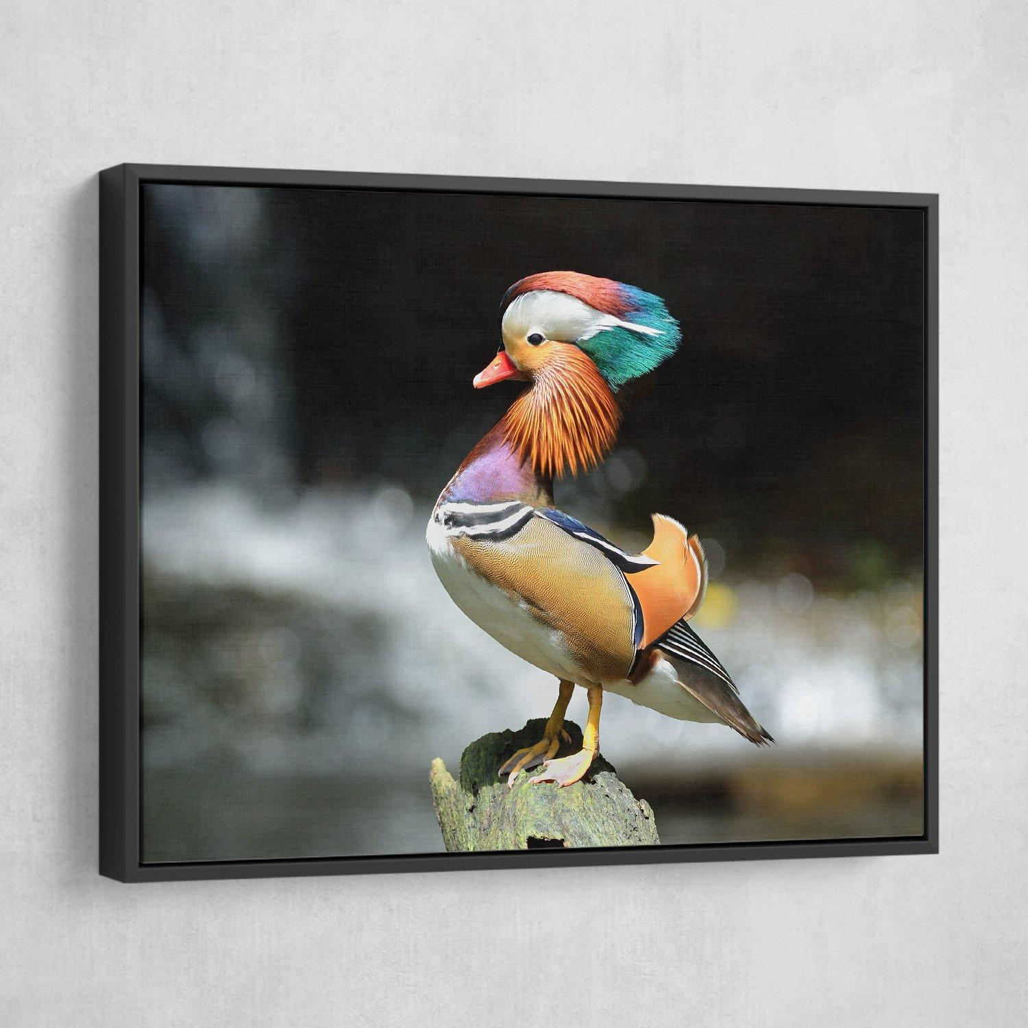 Mandarin Duck art