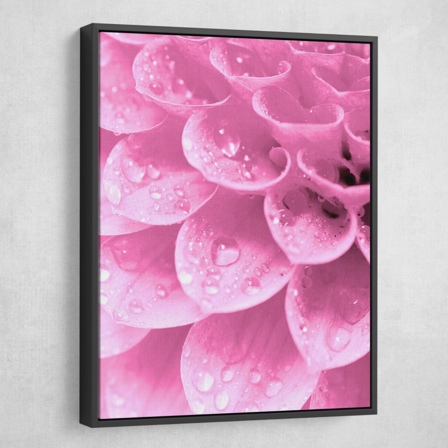 Water Drops on flowers wall art