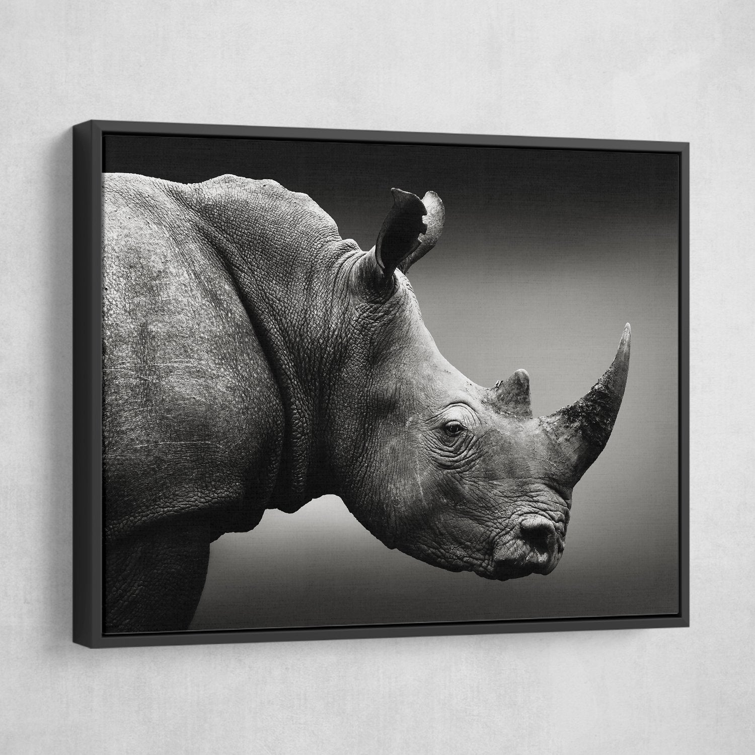 Rhinoceros wall art