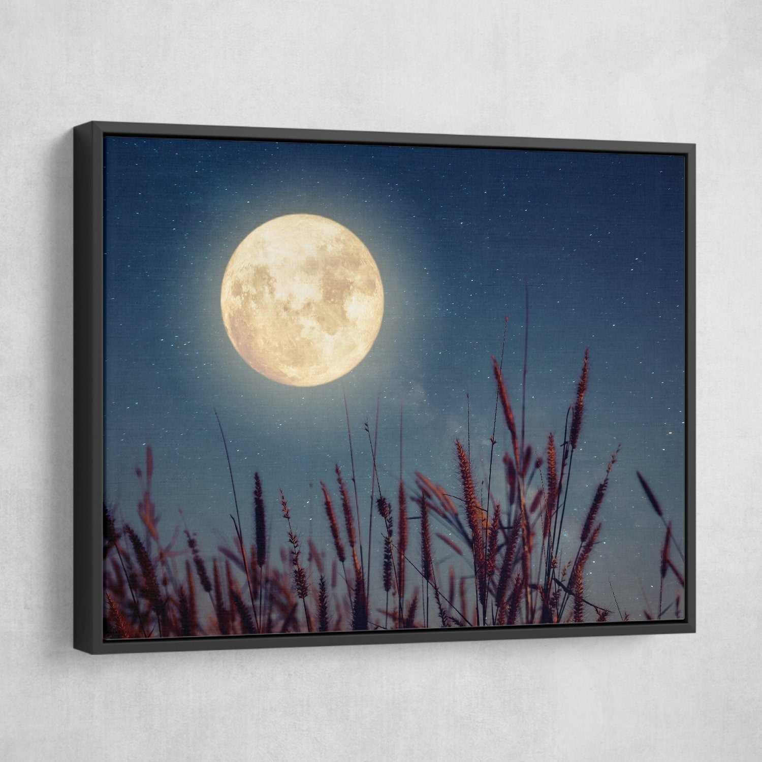 Flowers and moonlight wall art black frame