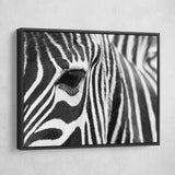zebra wall art black floating frame