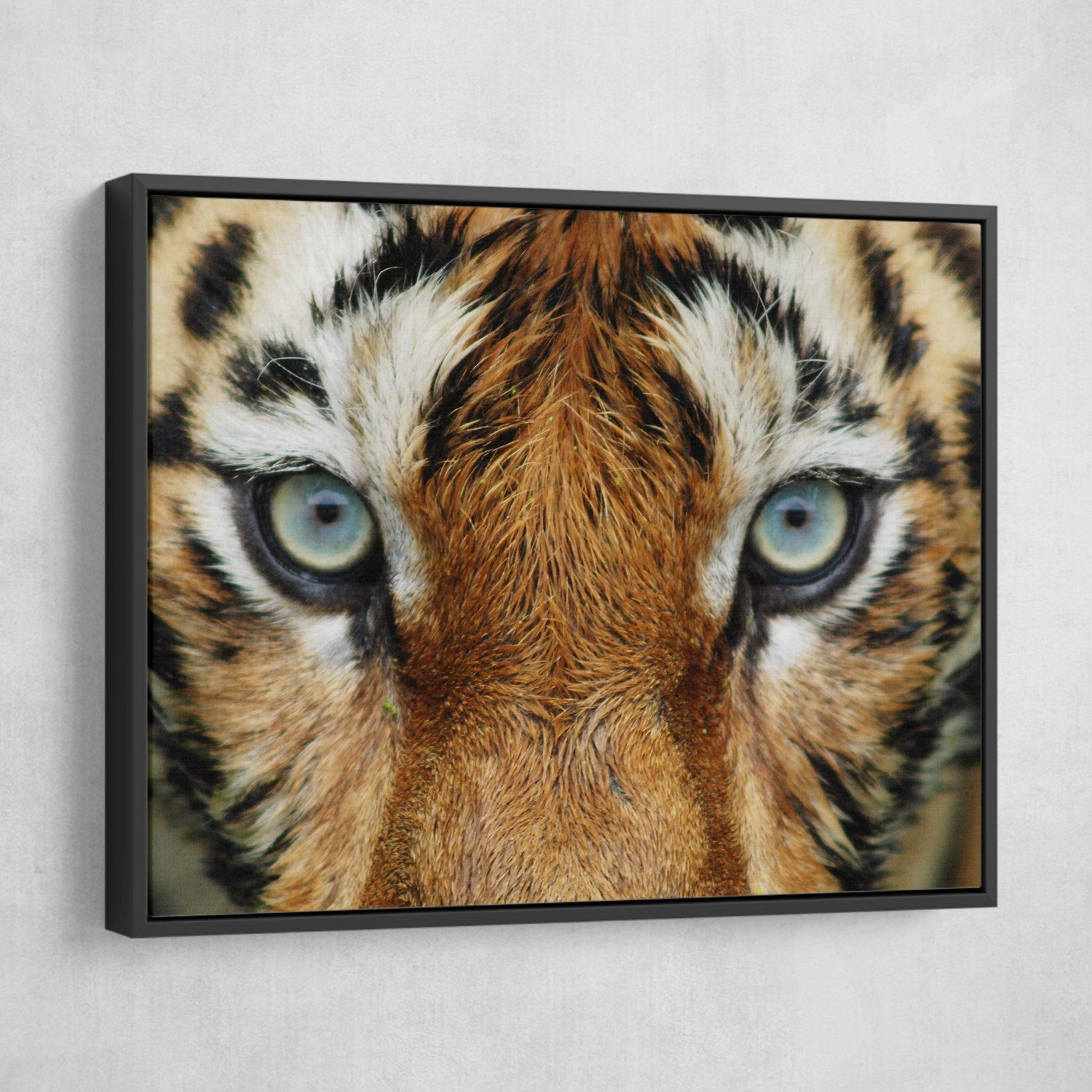 Tiger Eyes wall art floating frame