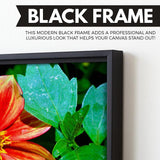 Dahlia Bishop of Llandaff flower wall art black floating frame