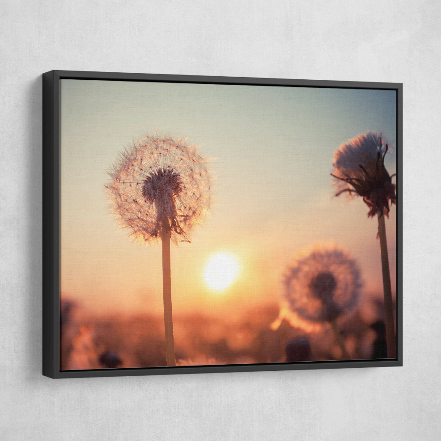 Dandelions at Sunset wall art black frame