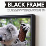 Curious Koala wall art black frame