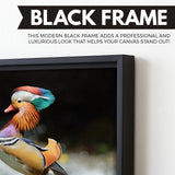 Mandarin Duck wall art black floating frame