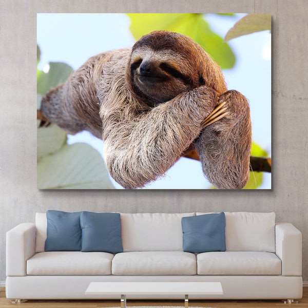 Happy Sloth wall art