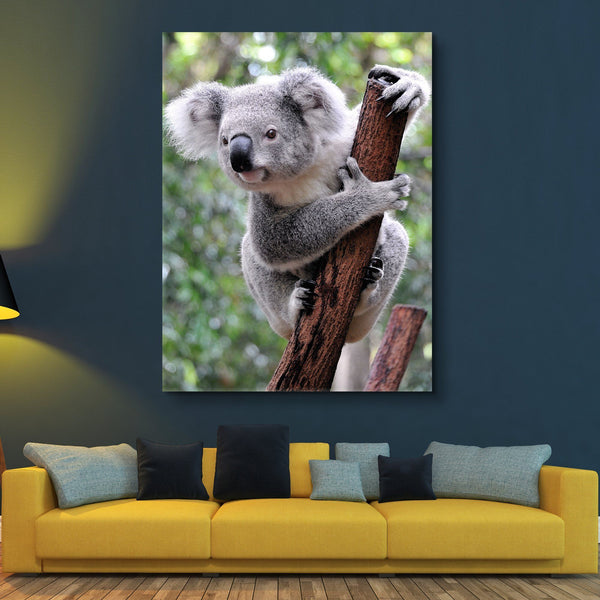 Curious Koala wall art