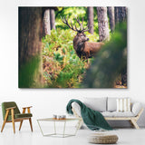 Red Deer in Autumn Forest wall art