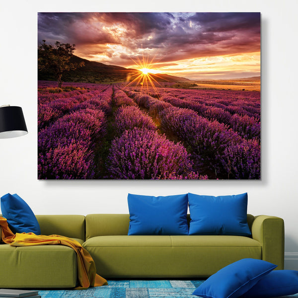 Lavender Field wall art