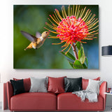 Working Hummingbird wall art