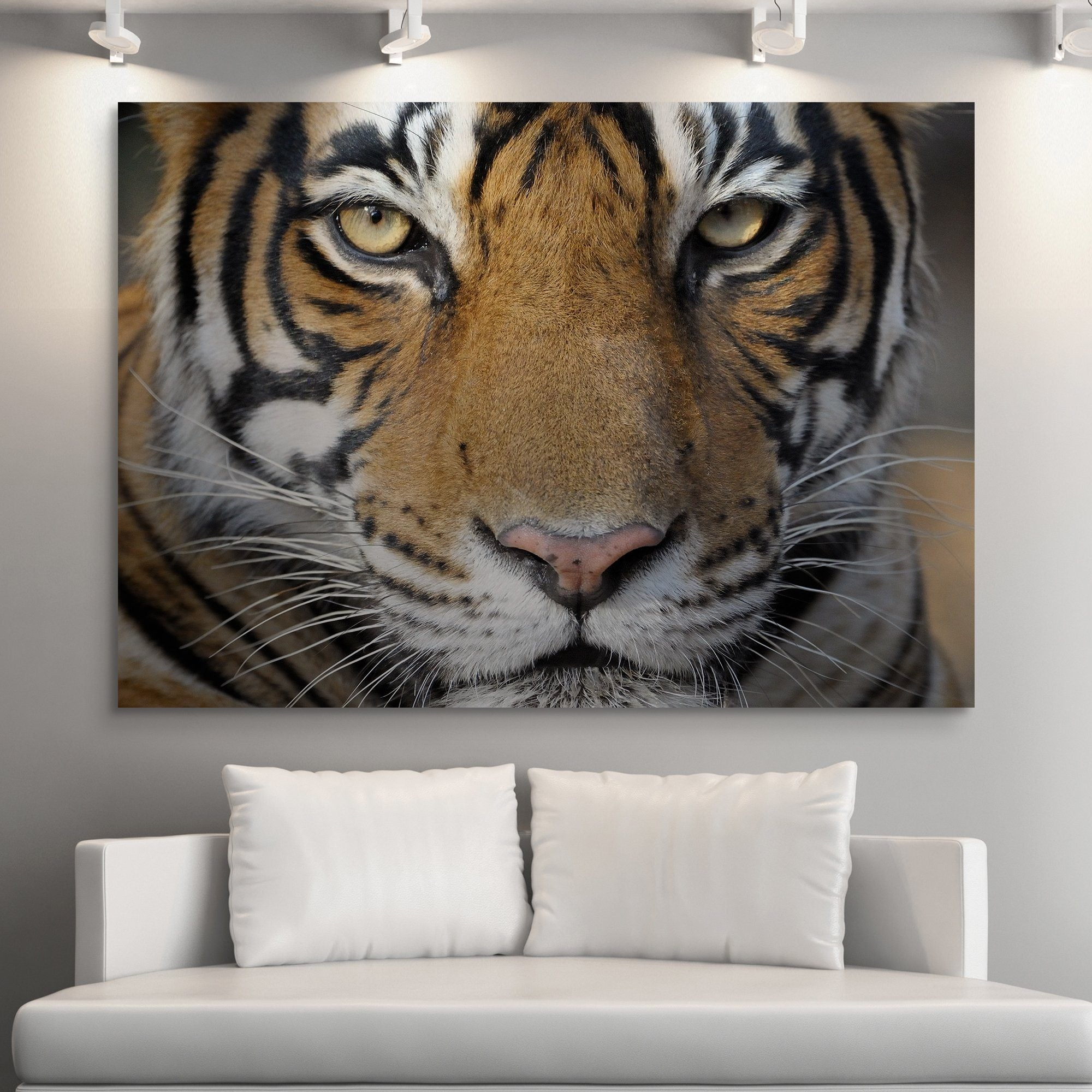 Bengal Tiger wall art