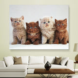 Four Kittens wall art