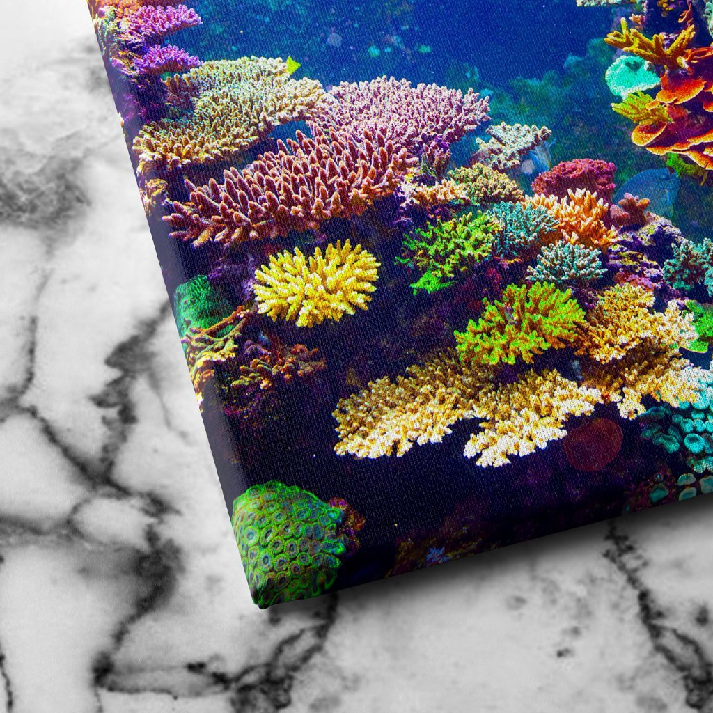 Coral Reef canvas art