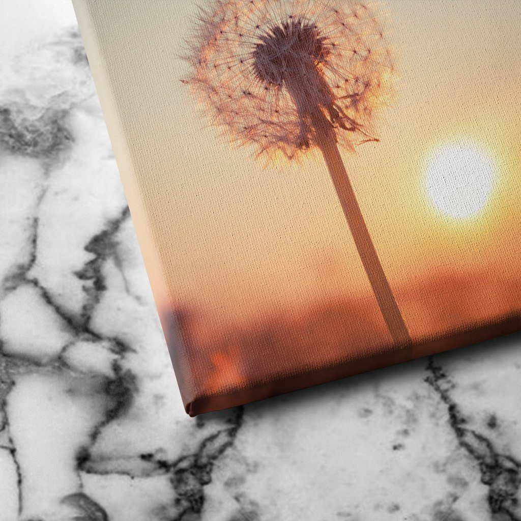 Dandelions at Sunset canvas art