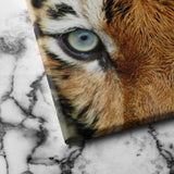 Tiger Eyes canvas art