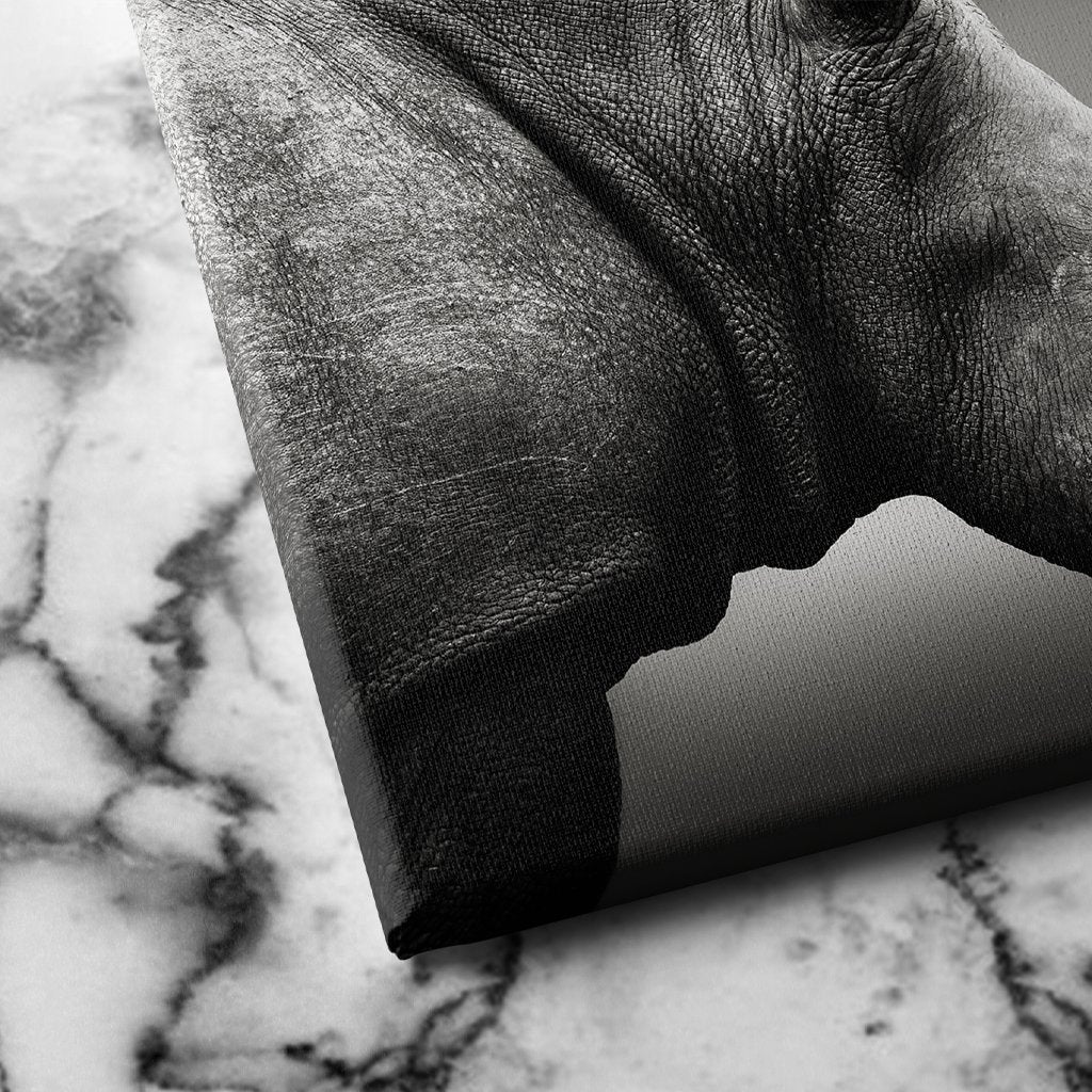 Rhinoceros Monochrome canvas art