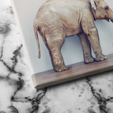 Baby and Elephant canvas wall art