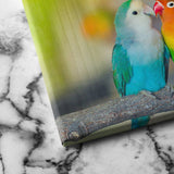 Love Birds canvas art