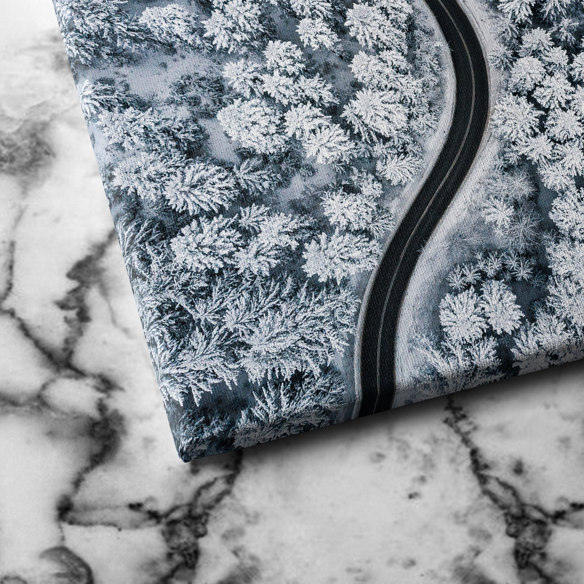 Snow Forest canvas art