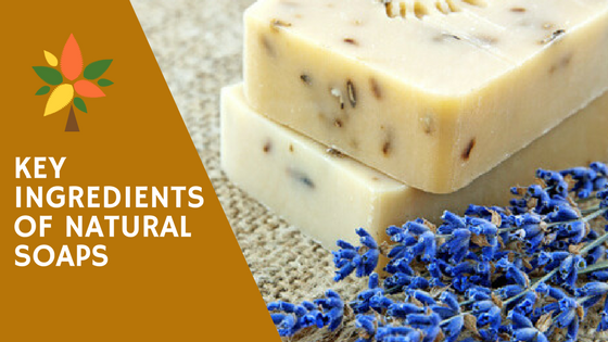 Key Ingredients of Natural Soaps
