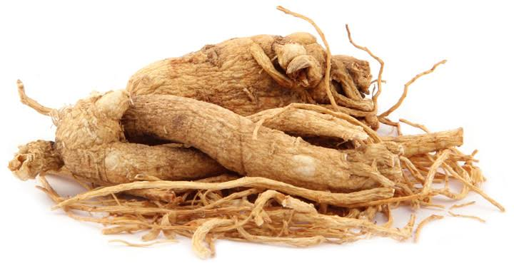The Importance of Panax Ginseng in your Skincare Products
