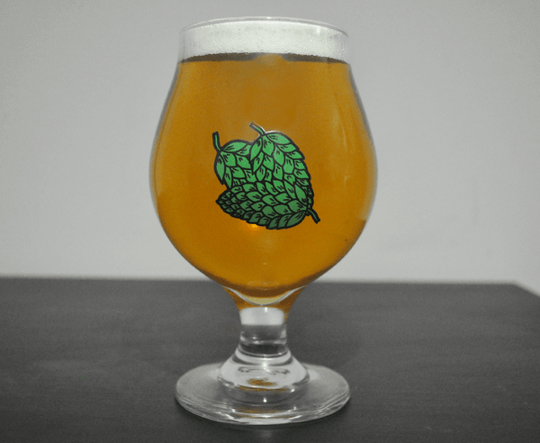 The beer snifter glass serves as one of the most versatile beer glasses. This beer goblet serves well as saison glassware, american ipa glass, and is a wide beer tulip.