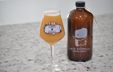 Best Craft Beer Glassware, Best Glass For IPA Beer, and Best Imperial IPA Glassware