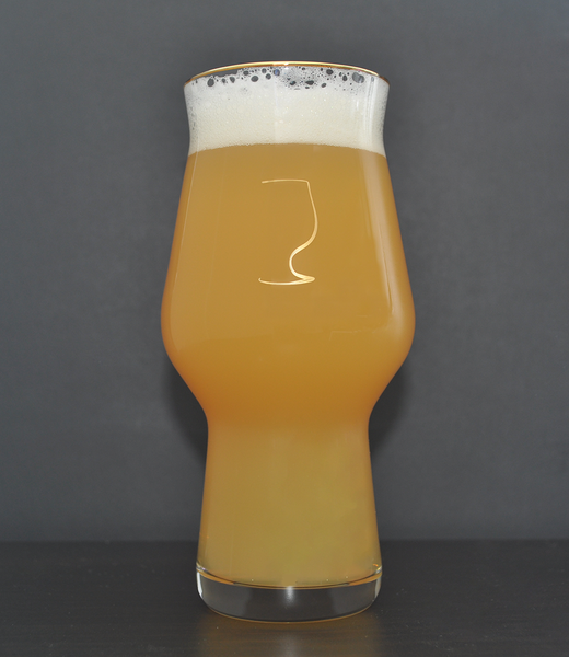 Best IPA Beer Glass and Best Glassware For Craft Beer