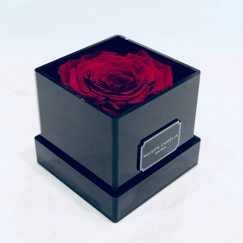 La Mini with 1 Premium Eternal Rose