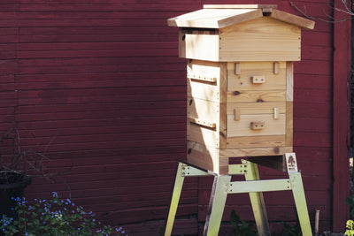 Warre hive on universal hive stand