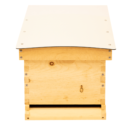 Front view of Deep Standard Langstroth for beekeeping with white composite roof