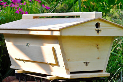 Golden Mean Hive with Peaked Roof