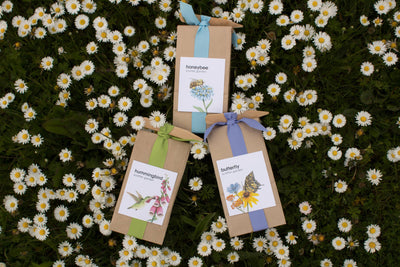 image of scatter garden collection